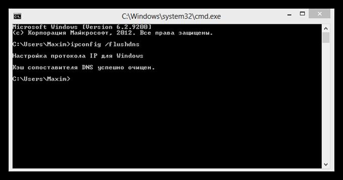 В командную строку вручную введите «ipconfig /flushdns»