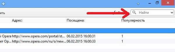 Как и в других браузерах, здесь есть форма для быстрого поиска