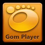 Скачать бесплатно gom player русская версия