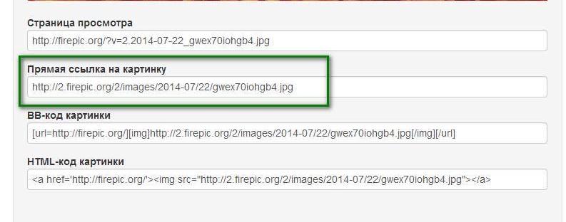Копируем прямую ссылки на картинку для отправки картинки в интернет
