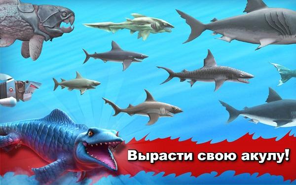 Hungry Shark Evolution скачать на высокой скорости